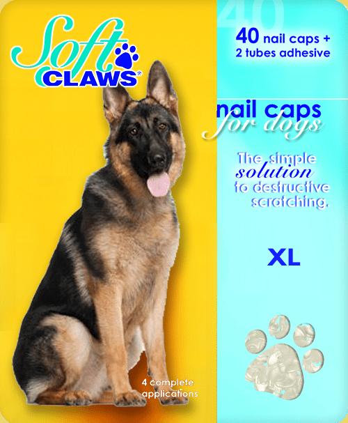 Dog Nail Caps Uk